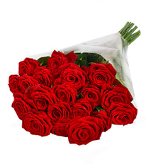 Romance in Red 20 Grand Prix Red Roses