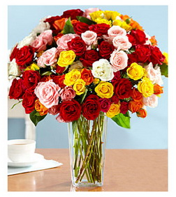 100 Blooms of Assorted Garden Spray Roses