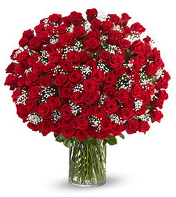 200 Red Roses