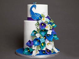 Peacock Feathers Cake