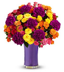 50 Delightful Blooms
