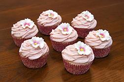 Daisy Swirls Dozen Cupcakes