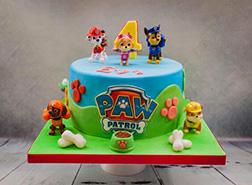 Paw Patrol Squad Cake 1