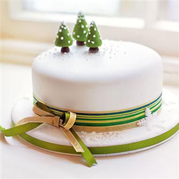 Winter Wonder Christmas Cake