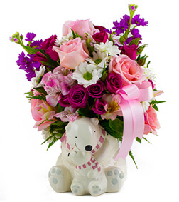 Baby Girl Cuddle Bear Bouquet