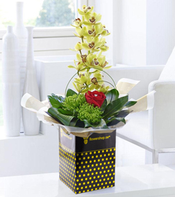 Romantic Orchid Arrangement