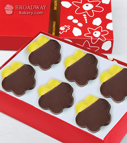 Chocolate Dipped Pineapple Daisies - Half Dozen