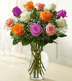 Multicolor Rose Elegance