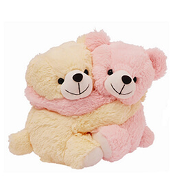 Snuggles Couple Bear