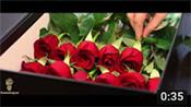 True Love - Long Stem Red Roses in Black Box