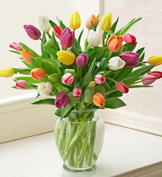 Radiant Tulip Bouquet