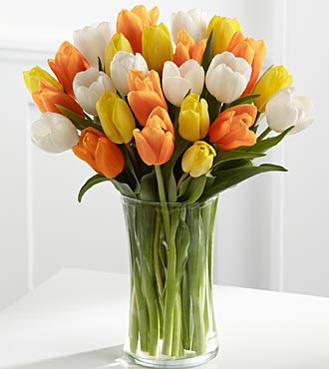 Summer Bounty Tulips