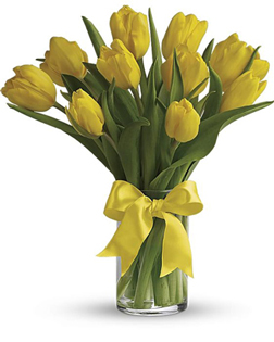 10 Yellow Tulips