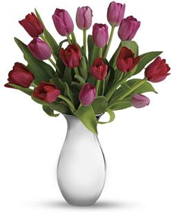 Moonlit Love Tulips