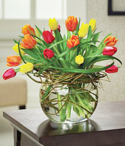 Contemporary Style Tulips