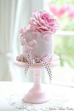 Pink Beauty Cake