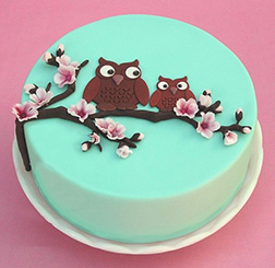Mother Owl Cherry Blossom Cake
