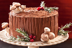 Chocolate Forest Log Cake