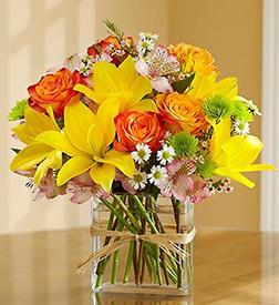 Sunlit Fields Bouquet