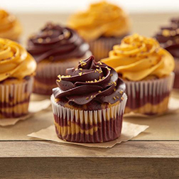 Chocolate and Gold Cupcakes