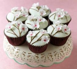 Floral Delight Dozen Cupcakes