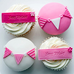Pink Party Birthday Dozen Cupcakes