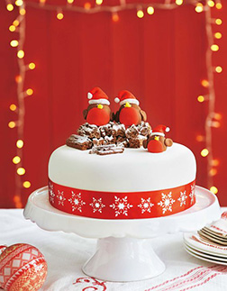 Red and White Yule Log Christmas Cake