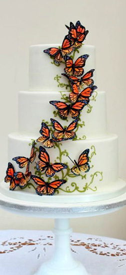 Monarch Rising Butterfly Cake
