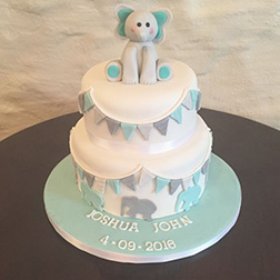Blue Baby Elephant Cake