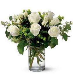 Alphine Roses
