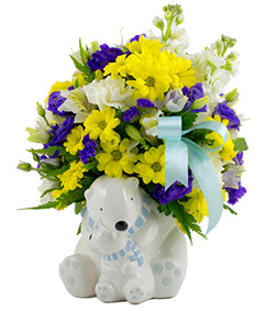 Baby Boy Cuddle Bear Bouquet