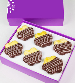 Swizzled  Chocolate Covered Pineapple Daisies