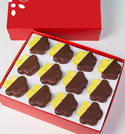 Chocolate Dipped Pineapple Daisies Box - Dozen