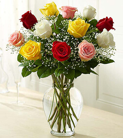 Premium Assorted Roses