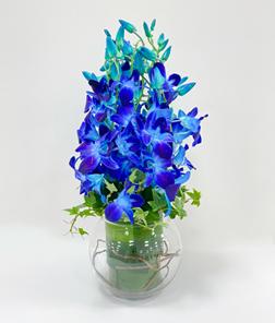 Opulent Blue Orchid Bouquet