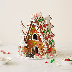 Candy Forest Gingerbread House