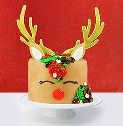 Red Nosed Reindeer Cake