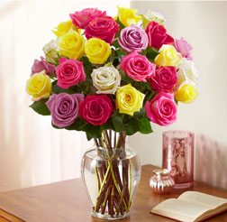 Assorted Multicolor Roses